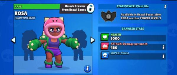 Новый персонаж Роза